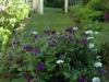 Mar-Garden-View.jpg